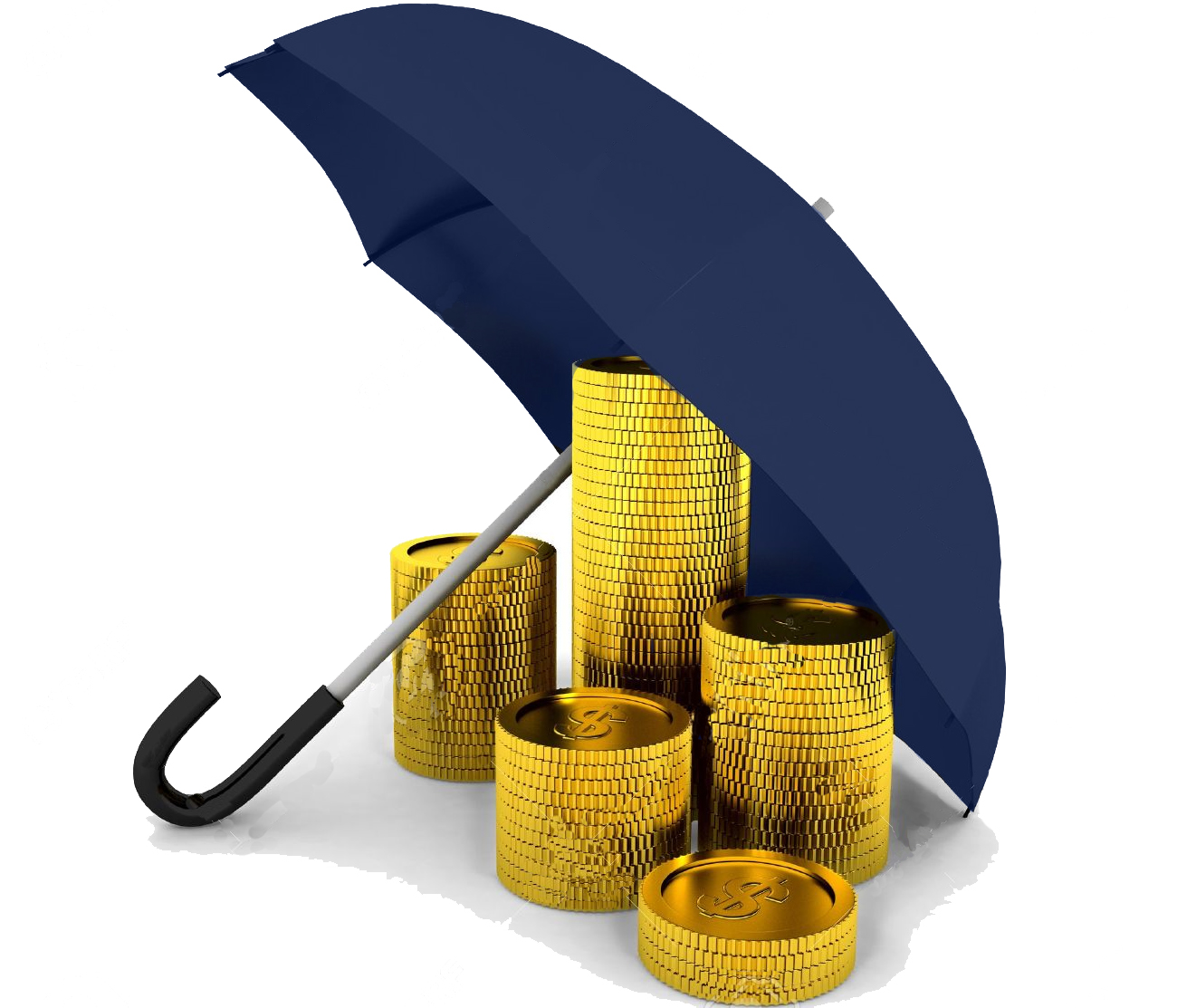 L Amp S Accounting Firm Umbrella Services